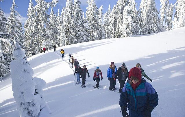 Un gruppo di persone cammina con le ciaspole durante una settimana bianca