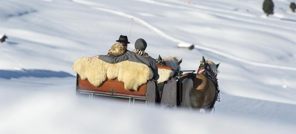 Slitta tirata da due cavalli sulla neve del Trentino Alto Adige